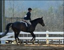 Sneakerss And Cat Mar 2013 4 Canter Web